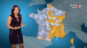 Anaïs Baydemir à la Météo de 20h - 04/01/15 - 10