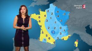 Anais Baydemir à la Météo de 20h - 04/01/15 - 11