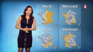 Anais Baydemir à la Météo de 20h - 04/01/15 - 14