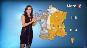 Anaïs Baydemir à la Météo de 20h - 04/01/15 - 15
