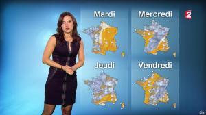Anaïs Baydemir à la Météo de 20h - 04/01/15 - 16