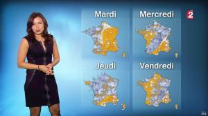 Anaïs Baydemir à la Météo de 20h - 04/01/15 - 17