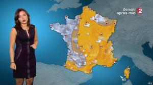 Anaïs Baydemir à la Météo de 20h - 04/01/15 - 27
