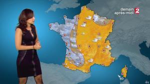 Anaïs Baydemir à la Météo de 20h - 04/01/15 - 28