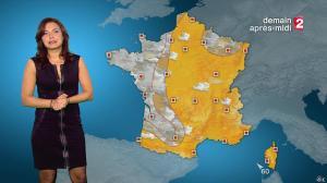 Anaïs Baydemir à la Météo de 20h - 04/01/15 - 30