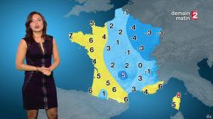 Anaïs Baydemir à la Météo de 20h - 04/01/15 - 31
