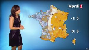 Anaïs Baydemir à la Météo de 20h - 04/01/15 - 33
