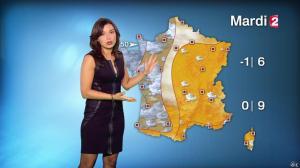 Anaïs Baydemir à la Météo de 20h - 04/01/15 - 34