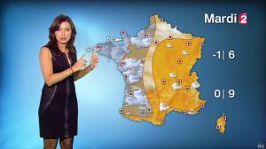 Anaïs Baydemir à la Météo de 20h - 04/01/15 - 35