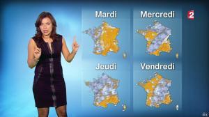 Anaïs Baydemir à la Météo de 20h - 04/01/15 - 36