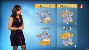 Anaïs Baydemir à la Météo de 20h - 04/01/15 - 37