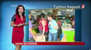 Anaïs Baydemir à la Météo de 20h - 05/12/14 - 03