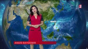 Anais Baydemir à la Météo de 20h - 05/12/14 - 21