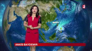 Anais Baydemir à la Météo de 20h - 05/12/14 - 23