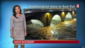 Anaïs Baydemir à la Météo de 20h - 15/11/14 - 04