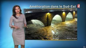 Anaïs Baydemir à la Météo de 20h - 15/11/14 - 05
