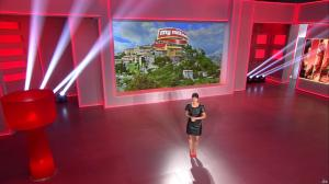 Estelle Denis dans My Million - 18/11/14 - 02
