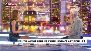 Sonia Mabrouk dans les Voix de l'Info - 11/01/18 - 14