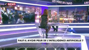 Sonia Mabrouk dans les Voix de l'Info - 11/01/18 - 22