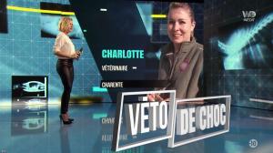 Stéphanie Renouvin dans Véto de Choc - 25/01/18 - 13