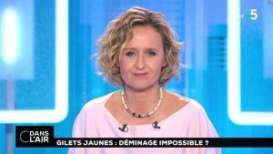 Caroline Roux dans C dans l'Air - 14/11/18 - 04