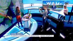 Caroline Munoz dans William à Midi - 15/11/19 - 06