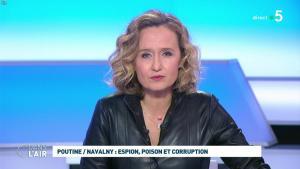 Caroline Roux dans C dans l'Air - 28/01/21 - 44