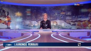 Laurence Ferrari au JT de 20h - 31/01/12 - 12