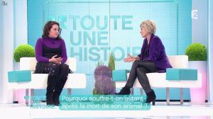 Sophie Davant dans Toute une Histoire - 03/02/12 - 02