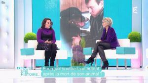 Sophie Davant dans Toute une Histoire - 03/02/12 - 03