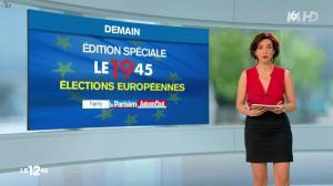 Nathalie Renoux dans le 12 45 - 24/05/14 - 04
