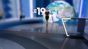 Nathalie Renoux dans le 19-45 - 31/05/14 - 01