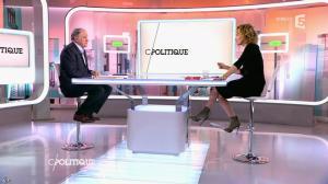 Caroline Roux dans C Politique - 05/04/15 - 03
