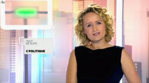 Caroline Roux dans C Politique - 24/05/15 - 01
