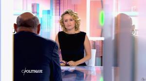 Caroline Roux dans C Politique - 24/05/15 - 03