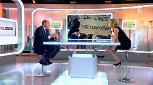 Caroline Roux dans C Politique - 24/05/15 - 11
