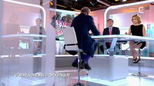 Caroline Roux dans C Politique - 24/05/15 - 12