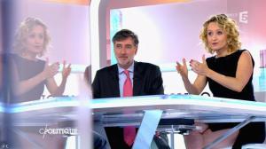 Caroline Roux dans C Politique - 24/05/15 - 17