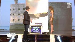 Elsa Fayer dans le Grand Match de la télévision - 30/04/15 - 04