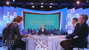 Natacha Polony dans le Grand Journal de Canal Plus - 06/02/15 - 06
