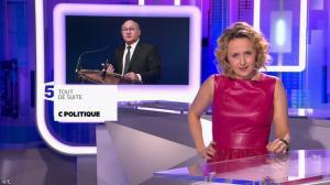 Caroline Roux dans C Politique - 03/04/16 - 08