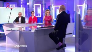 Caroline Roux dans C Politique - 03/04/16 - 10