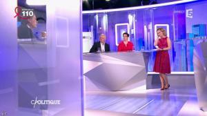 Caroline Roux dans C Politique - 03/04/16 - 50