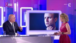 Caroline Roux dans C Politique - 03/04/16 - 81