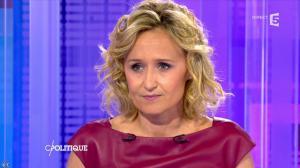 Caroline Roux dans C Politique - 08/05/16 - 13