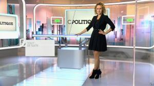 Caroline Roux dans C Politique - 08/11/15 - 01