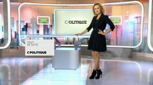 Caroline Roux dans C Politique - 08/11/15 - 02