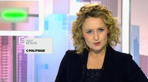 Caroline Roux dans C Politique - 08/11/15 - 04