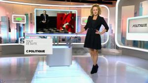 Caroline Roux dans C Politique - 08/11/15 - 05