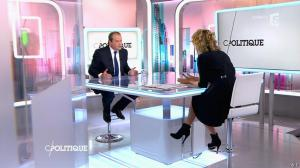 Caroline Roux dans C Politique - 08/11/15 - 11